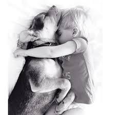 boy and dog 2