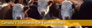 canadas-standards-for-farm