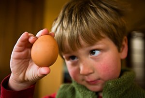 child eating eggs
